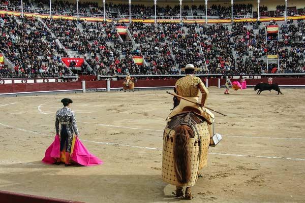 sports quiz corrida
